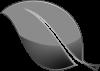 papermint designs logo
